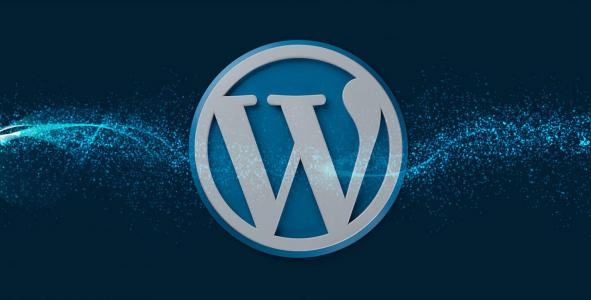 Best wordpress development services