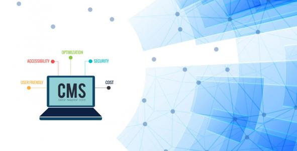 cms development company